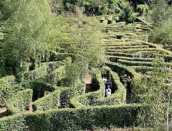 Le jardin fantastique